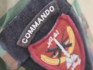 Commando Patch ANA